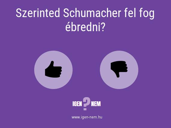 Szerinted Schumacher fel fog ébredni? IGEN? NEM? | igen-nem.hu